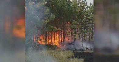 Helikopteri MUP pomažu u gašenju požara kod Nove Varoši