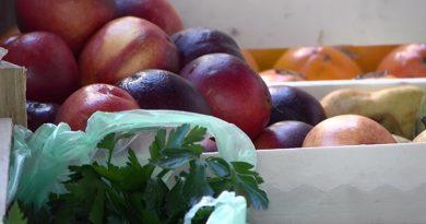 Zdrava ishrana najbitniji faktor za zdravo odrastanje dece